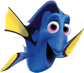 fn-dory.png