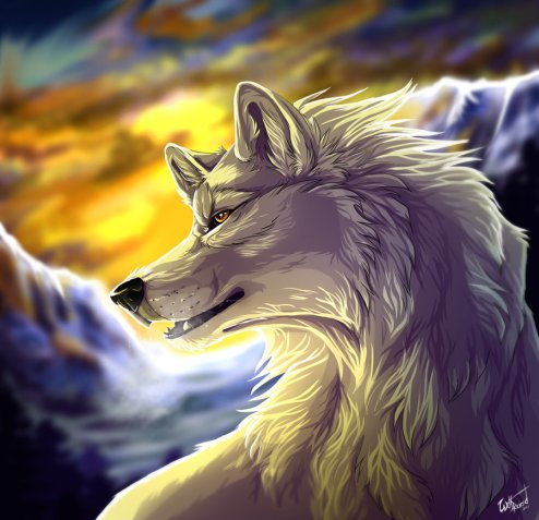 white_wolf_by_wolfroad-d4uhn3w